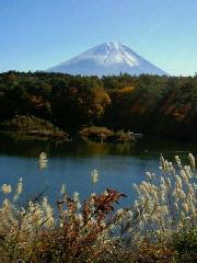 静岡県〜♪